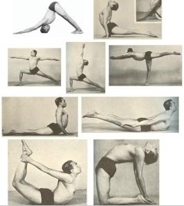 yoga sequences  susan richardson yoga