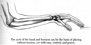 Arch Structure of the Arm